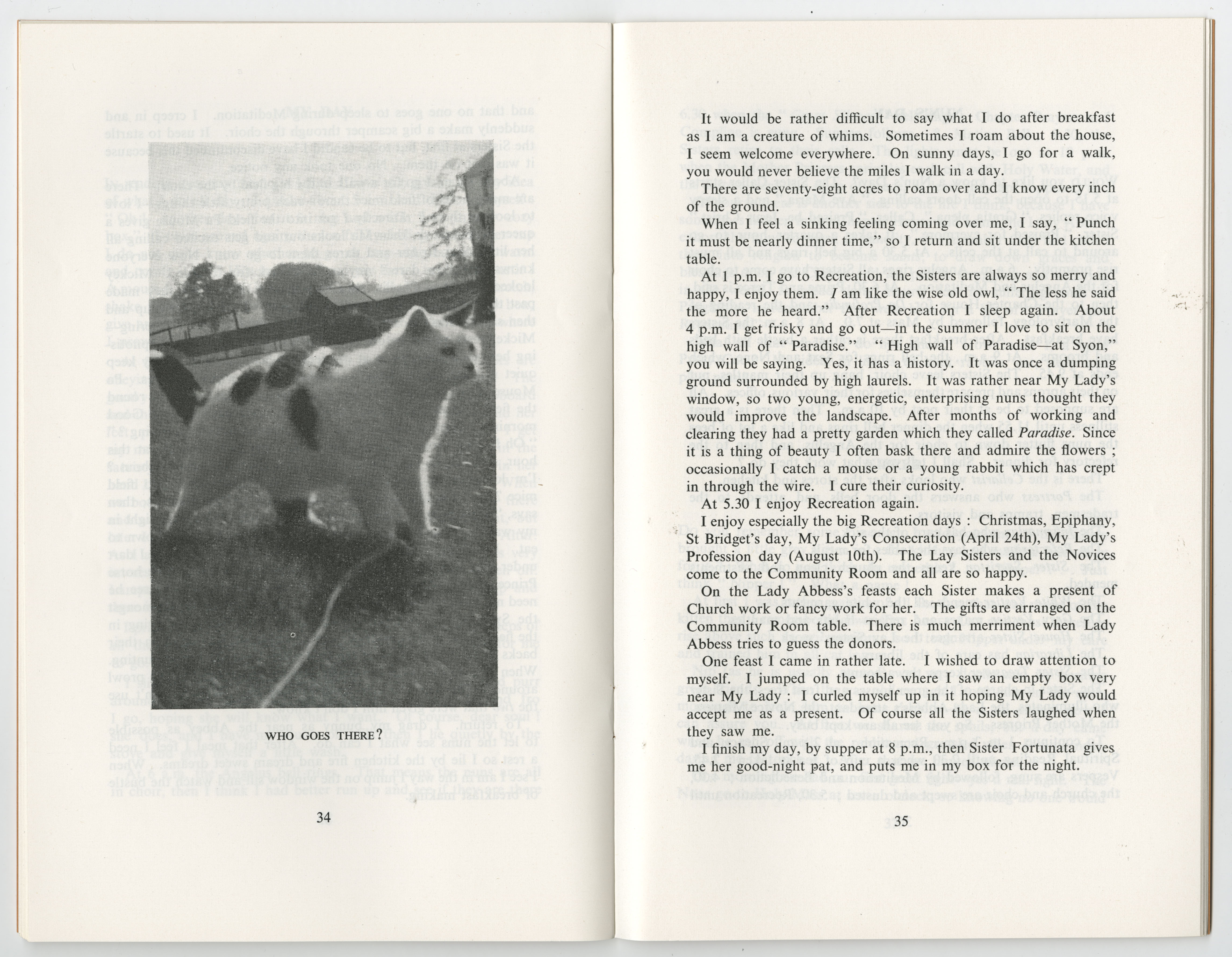 Page 34 and 35 of the pamphlet 'What the Abbey Cat Saw' (Reference EUL MS 389/PUB/2/1)