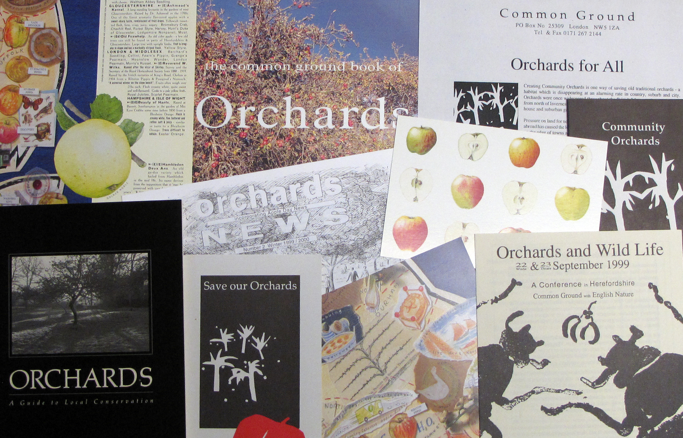 EUL MS 416/PRO/6 - Archive material relating to the 'Orchards' project